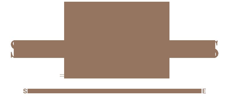StoreXmas Plus